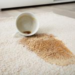 Area Rug Care | Messina's Flooring
