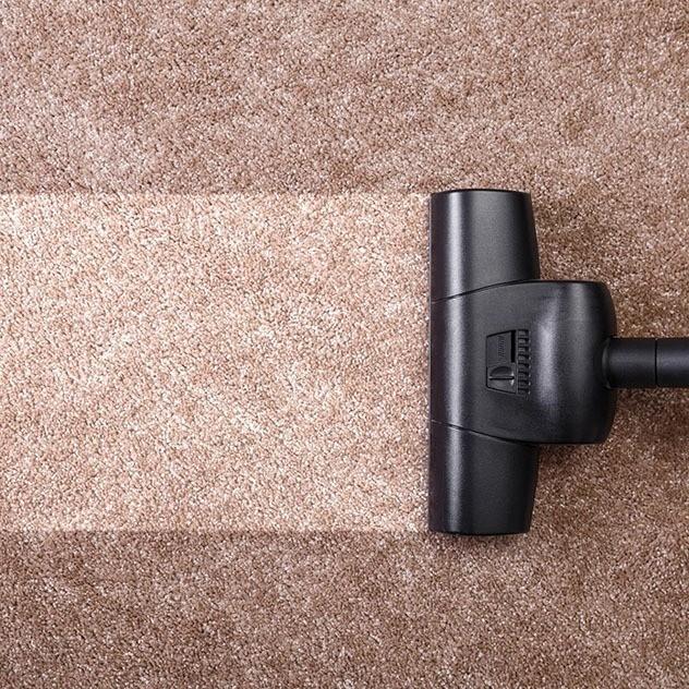 Carpet Care & Maintenance   Messina's Flooring