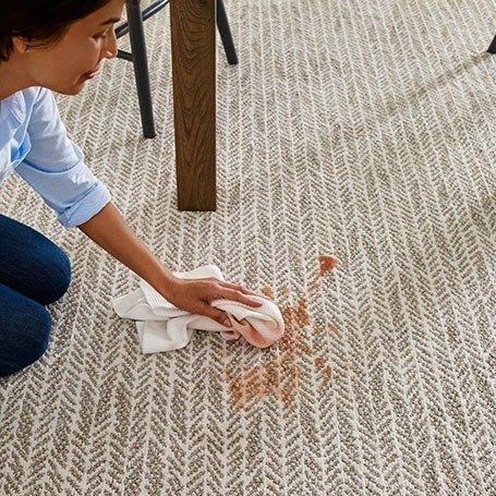 Carpet Care | Messina's Flooring